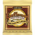 ERNIE BALL 2003 Earthwood Medium Light
